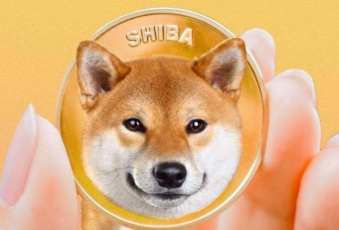 SHIB Inu Coin : how to invest in shiba inu coin 2021 : shiba inu (shib) price, News today